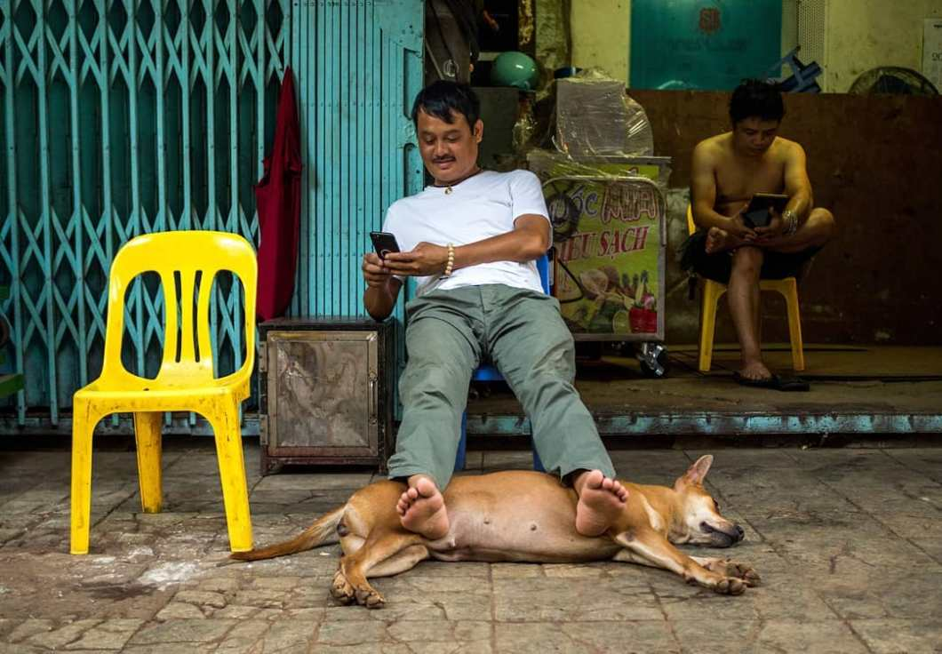 vietnamese man and a dog, travelling south east asia by William Steel Photography